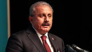 TBMM Başkanı Şentop: ABDnin meselesi Ermeniler değil