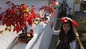 Okullar atık malzemelerle çiçek açtı