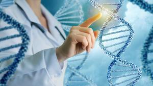 Bilim insanları, çiğnediği sakızdan 6 bin yaşındaki kadının DNAsına ulaştı