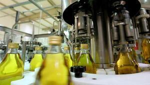 Gökçeadanın Karadenizlileri güçlerini birleştirip zeytinyağı fabrikası kurdu