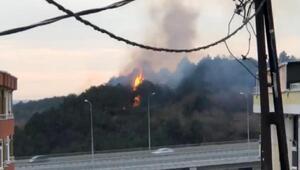 Son dakika... Arnavutköyde orman yangını