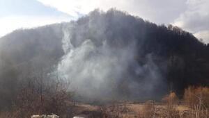 Bursada yarım saat arayla 2 orman yangını