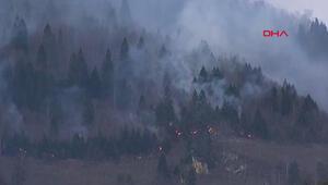 Karadenizde 26 noktada orman yangını
