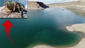 Van Gölü Havzasında büyük tehlike 600 bin yıldan sonra ilk kez görüldü...