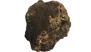 Son dakika haberi: Ceviz ağacı dikerken meteorit buldu