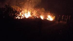 Trabzonda örtü yangınları
