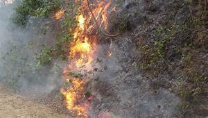 Trabzondaki örtü yangınlarıyla ilgili 7 kişiye soruşturma