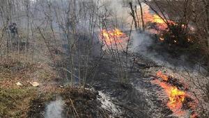 Son Dakika: Ordu ve Giresundaki yangınlar söndürüldü