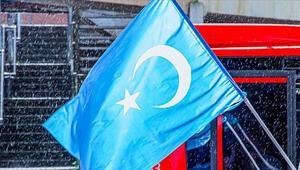 Uygur Türklerinin durumu 2019da dünya gündemine oturdu