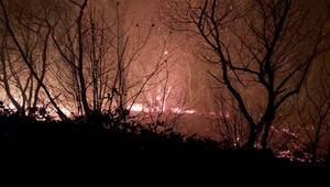 Trabzondaki örtü yangınları söndürüldü Valilikten açıklama geldi