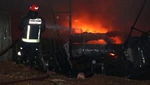 Yangın çıktı, onlarca araç kül oldu