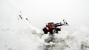 Tuncelide kar 1 metreyi aştı, 150 köy yolu kapandı