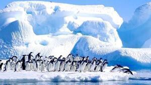 Türkiye Antarktikada ne yapıyor