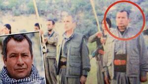 Son dakika haberi: MİT operasyonuyla etkisiz hale getirilmişti… Abdullah Öcalanın akrabası olduğu ortaya çıktı