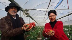 Fotoğrafçı ve profesör eşi el ele verdi Tonlarcasını satıyor...