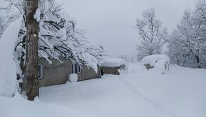 Beytüşşebapta kar yağışı sonrası kartpostallık görüntüler oluştu