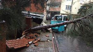İstanbulda fırtınada 108 çatı uçtu, 128 ağaç devrildi, 3 istinat duvarı çöktü