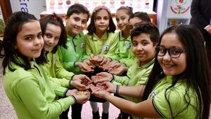 Biyolojik çeşitliliği okulda oluşturulan tohum bankasında öğreniyorlar
