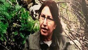 Son dakika haberi… PKK'nın en üst yapılanmasındaki kritik isim öldürüldü