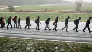 Sığınmacı sayısı düştü, yabancı öğrenci sayısı arttı