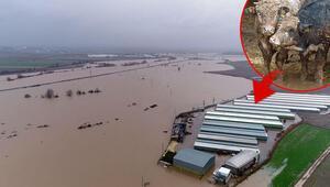 Hırsızlar kabloları kesti, 3 bin dönüm arazi sular altında kaldı