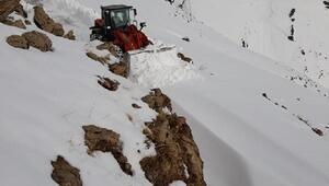 Batmanda, 24 köy yolu kardan kapandı