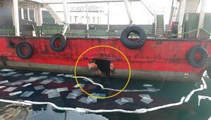 Son dakika... Çanakkale Boğazında balıkçı teknesi feribota çarptı Kaptan uyuyordu iddiası...
