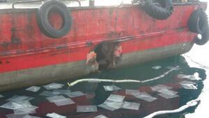 Çanakkale Boğazında balıkçı teknesi feribota çarptı