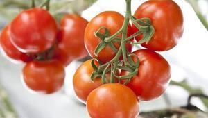İstanbullular 2019 yılında en çok domates ve patates tüketti
