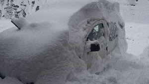 Ayder Yaylası'nda kar kalınlığı 40 santime ulaştı