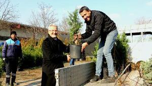 Nilüfer Belediyesinden yeşil seferberliğe tam destek