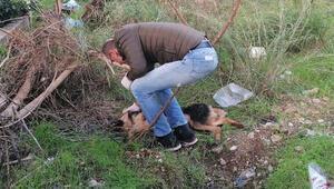 İnsanlara zarar verse daha mı iyi olacak deyip, köpeği bıçaklayarak öldürdü