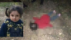 Esad'ın saldırılarından kaçan Minik Erva kayboldu, donarak öldü