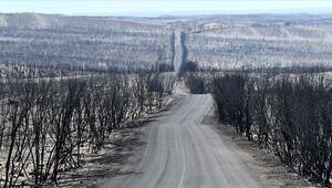Avustralya yangınları tüm dünyayı saracak, yeni normal olabilir