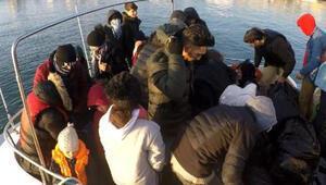 Çanakkalede 36 kaçak göçmen yakalandı