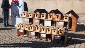 Zarada kuşlar ve sokak hayvanları için yuva