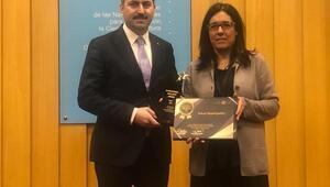 Kanal Tokat projesi'ne uluslararası idealkent ödülü