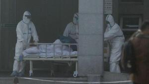 Çin'de ortaya çıkan yeni koronavirüsü salgına dönüşüyor