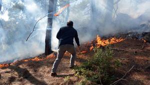 Seydikemerde orman yangını; 5 dönüm alan yandı