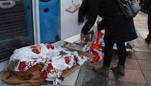 Soğukta sokak hayvanlarının altına karton, üstüne battaniye
