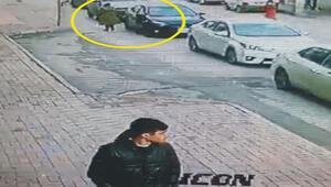 Turist kadının düşürdüğü cüzdanı alan motosikletli kamerada