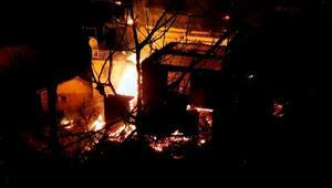 Nazillide 13 ev yandı, koyunlar telef oldu