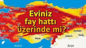 Doğu Anadolu ve Kuzey Anadolu Fay Hattı nerelerden geçiyor Türkiye fay hattı haritası sorgulama