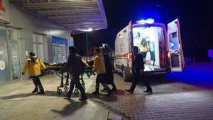 Adıyamanda otomobilin çarptığı at öldü, 2 kişi yaralandı