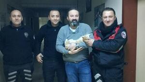 Yaralı kediye polis ilgisi