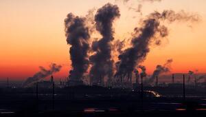 Sainsbury sera gazı emisyonunu 2040'a kadar sıfıra indirecek