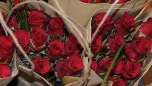 Mersin Devlet Opera ve Balesinden Sevgililer Günü konseri