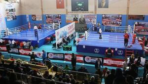 Türkiye Ferdi Boks Şampiyonası sürüyor
