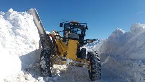 Bingölde 178 köy yolu kardan kapandı
