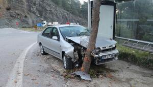 Kontrolden çıkan otomobil ağaca çarptı: 3 yaralı